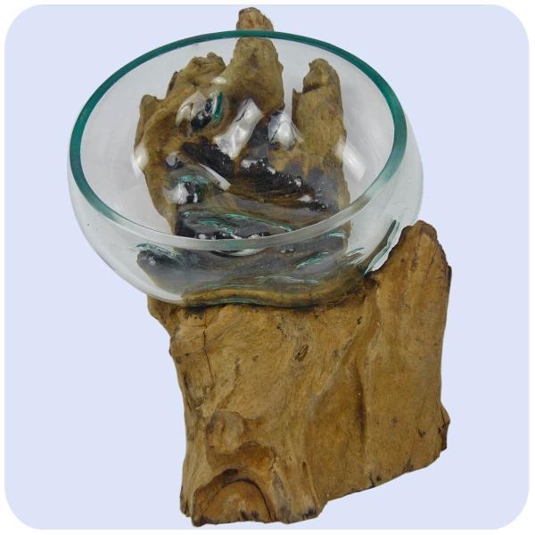 Wurzelholz Glas-Vase Wurzel-Vase Deko-Glas Holz Geschenk Unikat Objekt Design Blumenvase Schale